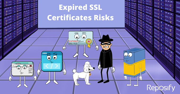 The Risks of Expired SSL Certificates
